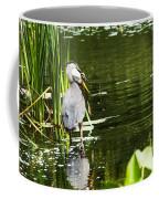 A Missing Frog Coffee Mug