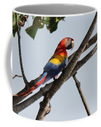 A Moment Of Rest Coffee Mug