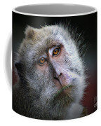 A Monkey's Look Coffee Mug