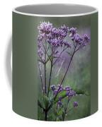 A Morning Walk Coffee Mug