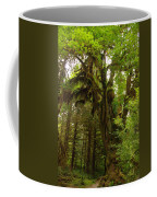 A Moss Covered Tree  In The Ho National Rain Forest Coffee Mug