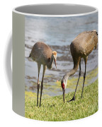 A Mother's Lesson Coffee Mug