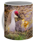 A Mother's Lovely Touch Coffee Mug