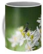 A Nectar Drink For This Black Mud Dauber   Coffee Mug