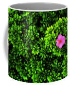 A Painting Azalea On Boxwoods Coffee Mug