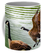 A Pair Of Canada Geese Landing On Rockland Lake Coffee Mug