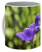 A Pair Of Purple Balloon Flowers Coffee Mug