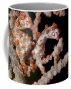 A Pair Of Pygmy Seahorse On Sea Fan Coffee Mug