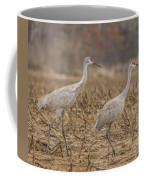 A Pair Of Sandhill Cranes 2014-1 Coffee Mug