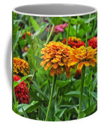 A Pair Of Yellow Zinnias 03 Coffee Mug