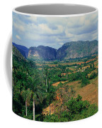 A Panoramic View Of The Valle De Coffee Mug