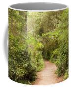 A Path To The Redwoods Coffee Mug