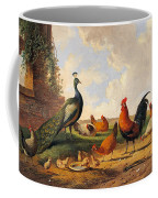 A Peacock And Chickens In A Landscape  Coffee Mug
