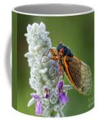 A Perfect Model Coffee Mug