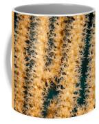 A Polyp Line Coffee Mug by Jean Noren