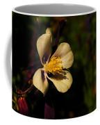 A Pretty Flower In The Sun Coffee Mug