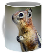 A Profile In Chipmunk Coffee Mug