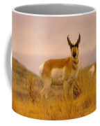 A Pronghorn Gazes Coffee Mug