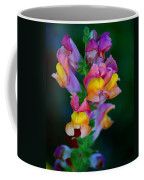 A Rainbow Flower Coffee Mug