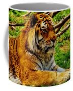A Real Detroit Tiger Coffee Mug