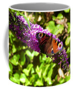 A Red Admiral On A Purple Budlier Coffee Mug