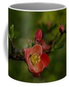 A Red Flower Coffee Mug