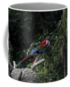A Red Green And Blue Macaw On A Branch In The Jurong Bird Park Coffee Mug