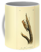 A Red Moustached Woodpecker Coffee Mug by Philip Ralley