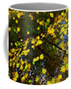A Reflection Amongst The Leaves Coffee Mug
