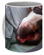 A Restful Nap Coffee Mug
