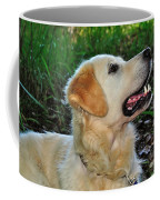 A Retriever's Loving Glance Coffee Mug