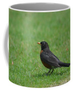 A Robin In June Coffee Mug
