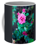 A Rose Blooms Coffee Mug