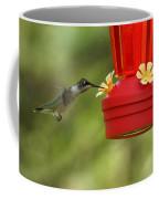 A Ruby-throated Hummingbird Coffee Mug
