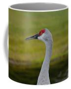 A Sandhill Crane Coffee Mug