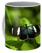A Sara Longwing Butterfly Heliconius Coffee Mug