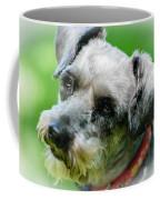A Schnoodle A Schnauzer Coffee Mug