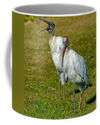 A Serious Woodstork Coffee Mug