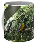 A Single Macaw Bird On A Branch Inside The Jurong Bird Park Coffee Mug