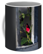A Single Rosebud Coffee Mug
