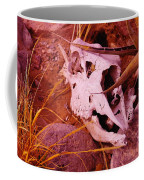 A Skull In The Rocks Coffee Mug