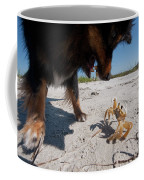 A Small Dog Fights With A Crab Coffee Mug