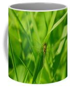 A Small Dragonfly Coffee Mug