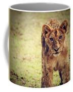 A Small Lion Cub Portrait. Tanzania Coffee Mug