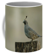 A Sole Rooster Quail Coffee Mug