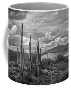 A Sonoran Winter Day In Black And White  Coffee Mug