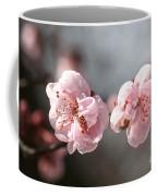 A Spring Dream Coffee Mug