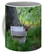 A Squirrel's Day Out Coffee Mug