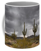 A Storm In The Sonoran Desert Coffee Mug