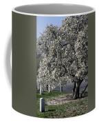 A Tree In Arlington Coffee Mug